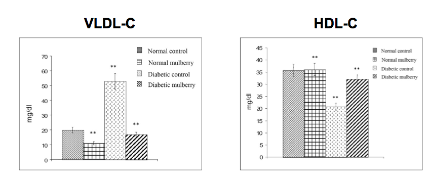 Mullberry increases HDL-C and decreases VLDL-C